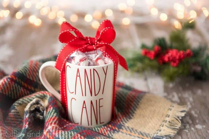 Cute Rae Dunn Inspired Candy Cane Mug