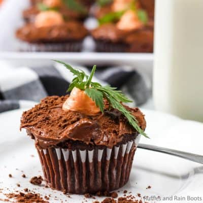 Make Easy Easter Carrot Cupcakes in Minutes!